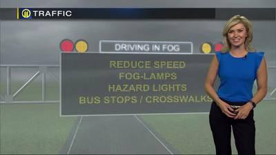 TRAFFIC: Driving in fog