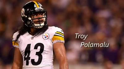 Troy Polamalu reflects on time as a Pittsburgh Steeler in social media post