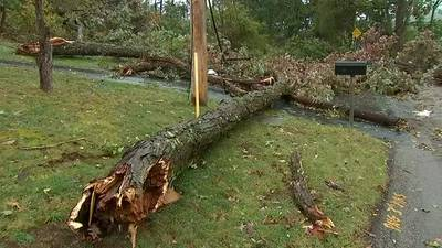 Tornado leaves path of damage in Hampton Township