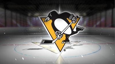 Penguins name Alec Schall as director of hockey operations