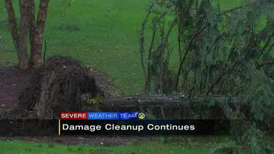 Storm damage cleanup continues in Washington County