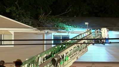 Tree crashes through Castle Shannon apartment building's roof